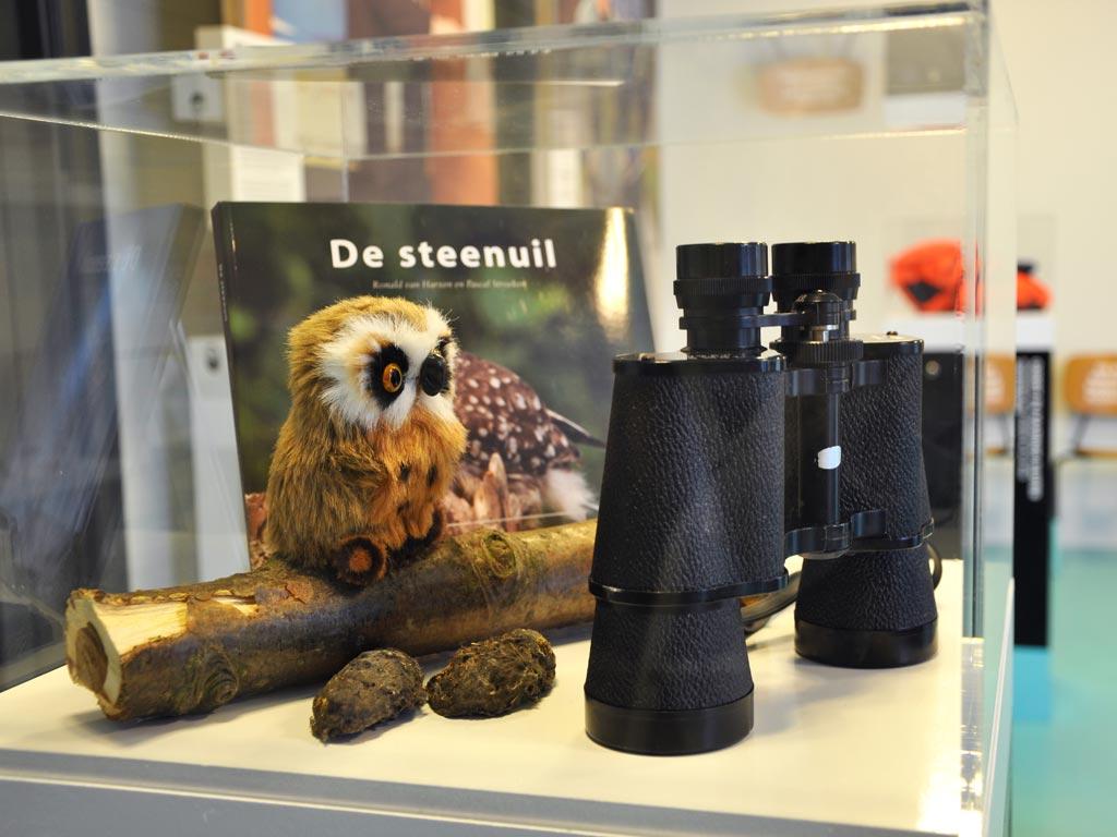 Expositie Ruimte voor de Rivier Deventer steenuil
